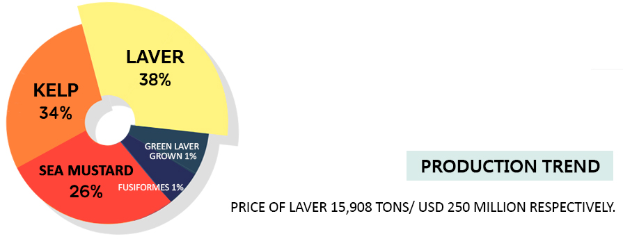 Production Trendprice of laver 15,908 tons/ USD 250 million respectively.